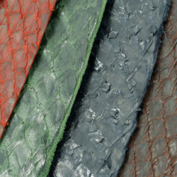 salmon leather color